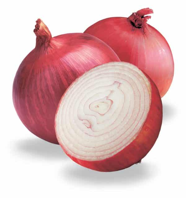 Red Onion (Local) are healthy whether they're raw or cooked, though raw onions have higher levels of organic sulfur compounds that provide many benefits.